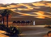 La promotion du secteur du tourisme en Algérie implique un changement des mentalités (Sellal)
