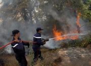 Protection civile: un dispositif pour lutter contre les incendies de forêt