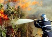 Feux de forêts: plus 12.300 éléments de la Protection civile mobilisés à partir du 1er juillet