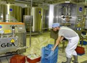Filière lait: des mesures pour surmonter les difficultés liées au stress hydrique et la Covid19