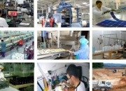 Garantie des crédits aux PME : la BEA signe une convention avec le FGAR